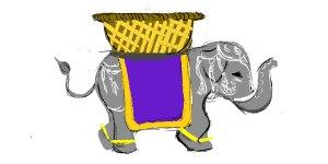 N_elephan